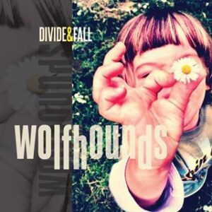 Listen! New single from The Wolfhounds 'Middle Aged Freak' – it's great