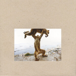 Shellac: Dude Incredible – album review. '10/10 For A Stunning Return'