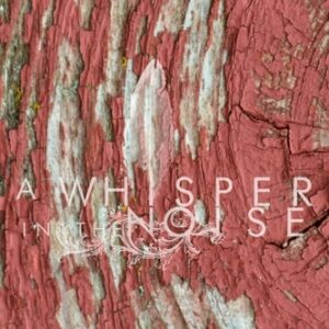 A Whisper In The Noise 'To Forget' – album review
