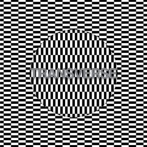 Carter Tutti Void 'Transverse' – album review