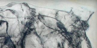 Tony Hawk artwork