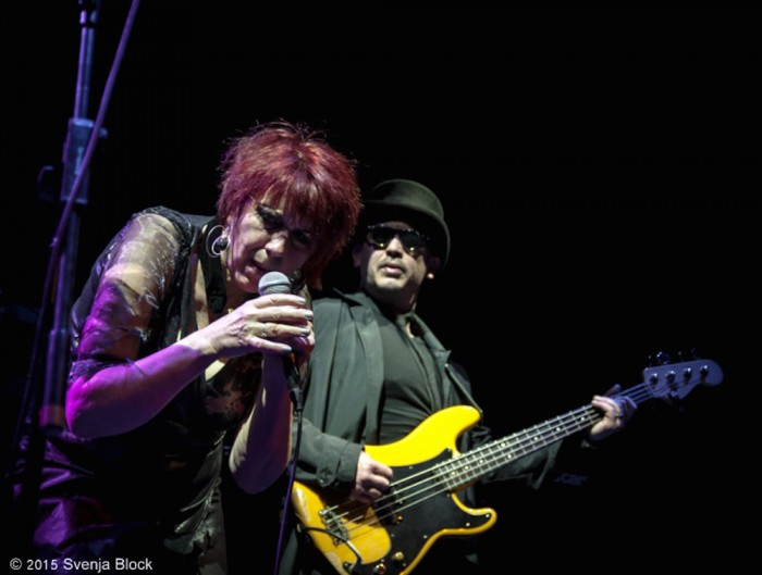 The Rezillos (14)