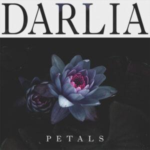 samuelburgessjohnson_darlia_petals_3_670