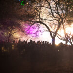 Parklife by night by Mudkiss Photography
