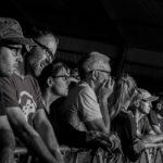 Cambridge Folk Festival 2015 Part One –  live review