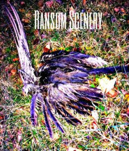 ransom scenery