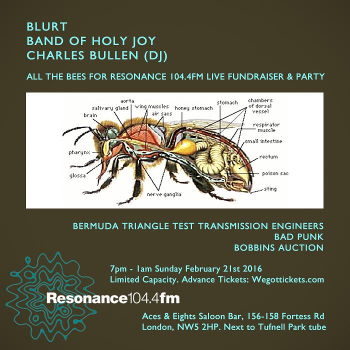 Blurt Band of Holy Joy