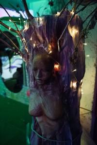 Cosmosis Festival © Melanie Smith