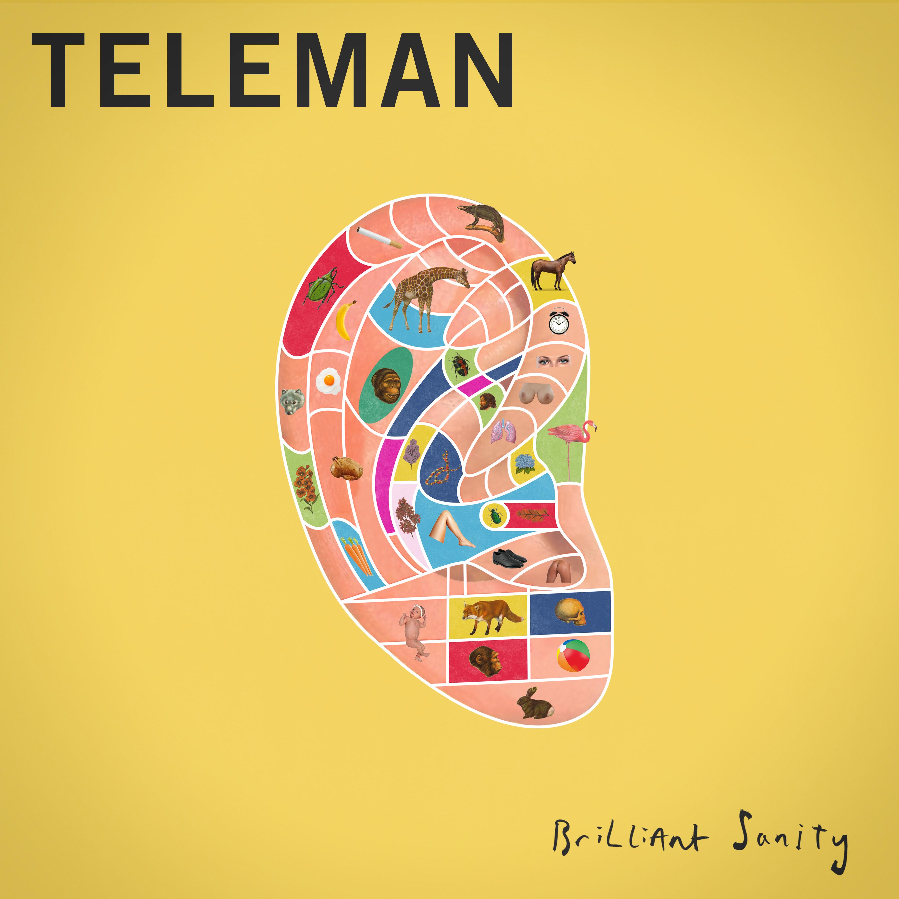 Teleman