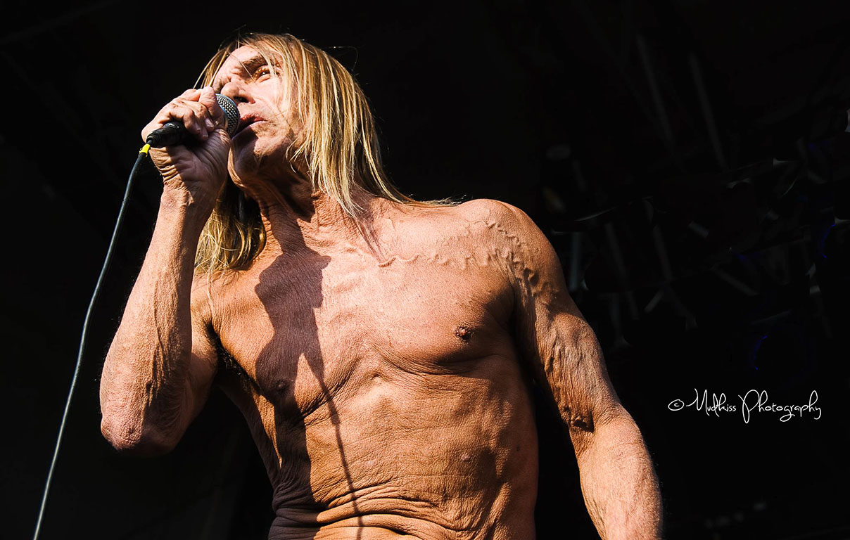 Iggy Pop © Melanie Smith