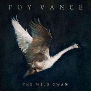 Foy Vance Wild Swan