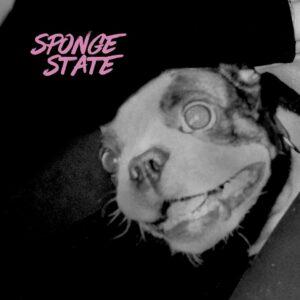 Sløtface-Sponge-State-EP