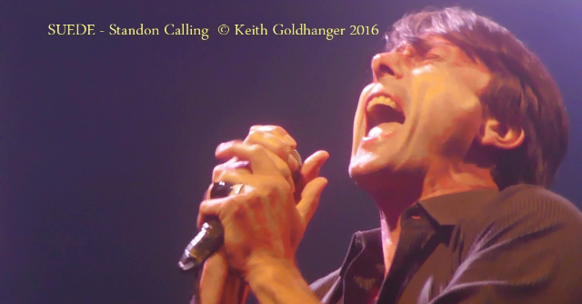 SUEDE STANDON CALLING - BY KEITH GOLDHANGER 2016 (24)