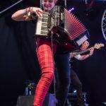 Wickham Festival – festival review
