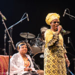 WOMAD: An Outsiders Guide – festival review