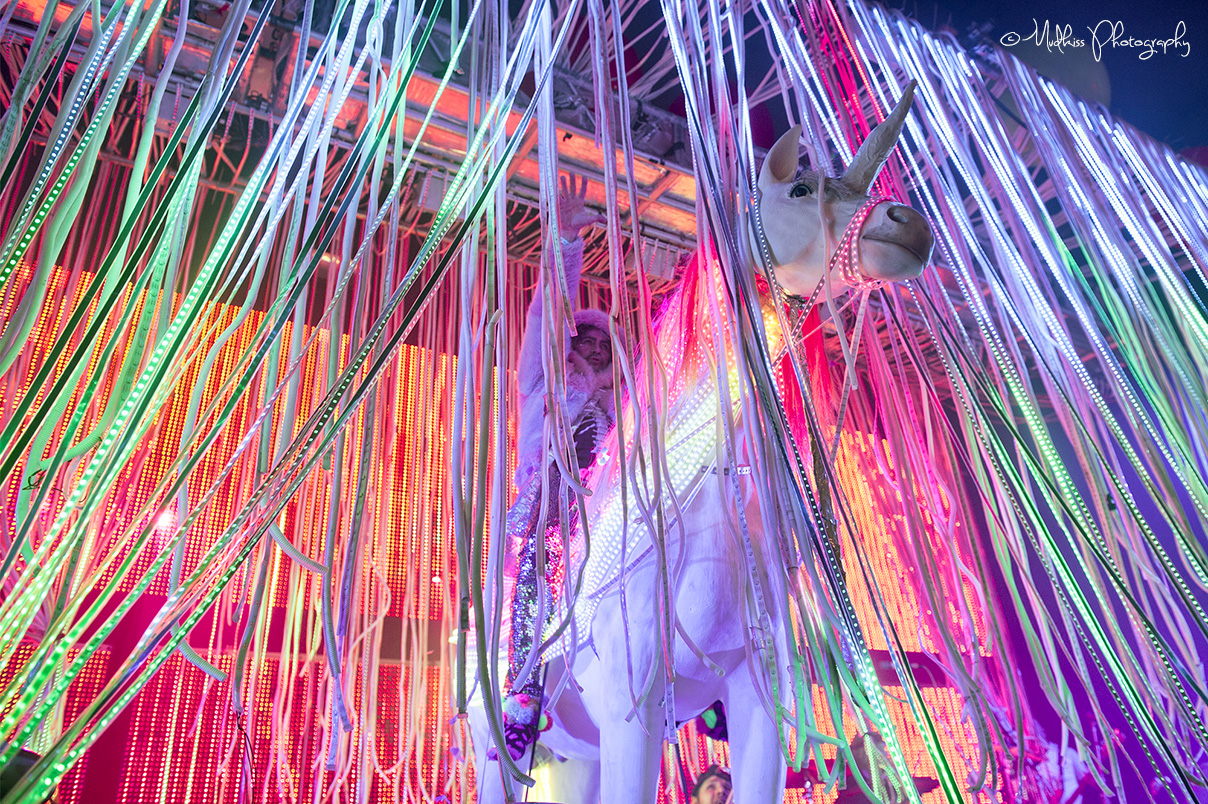 The Flaming Lips © Melanie Smith