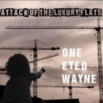 one eyed wayne