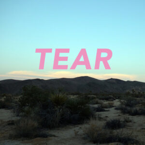 Tear VINYL01 album art work