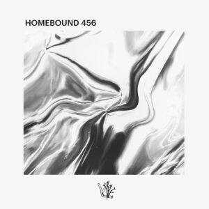 Vaarwell - Homebound 456