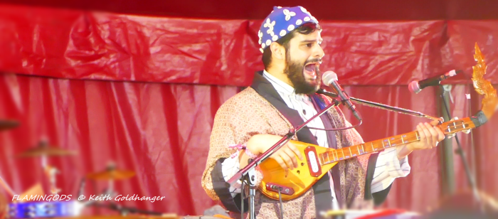 FLAMINGODS BY Keith Goldhanger Field day 2017 002
