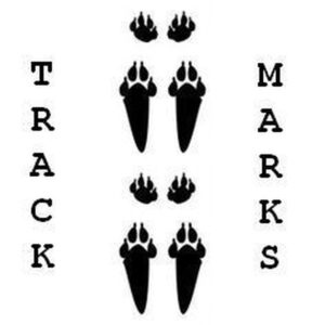 Ashley Reaks - Track Marks
