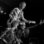 The Fleshtones (19)