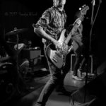 The Fleshtones (9)