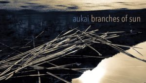 Aukai Branches of Sun
