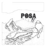 POSA - What About Long John