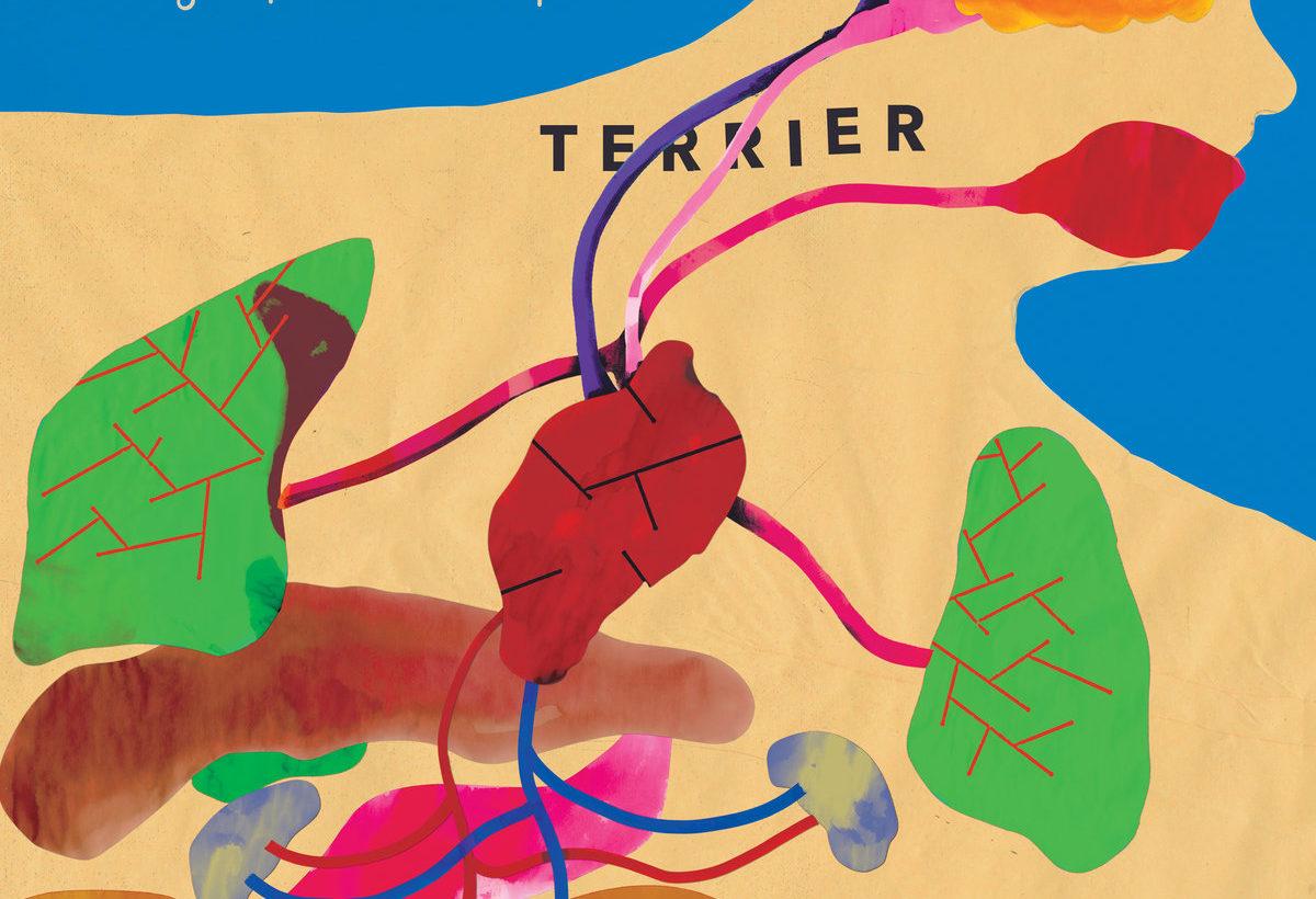 Terrier: Algo Para Romper – album review