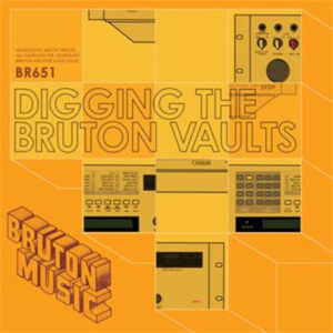 digging-the-bruton-vaults