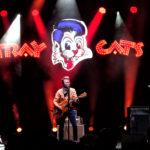 Stray Cats 3 by Ian Corbridge