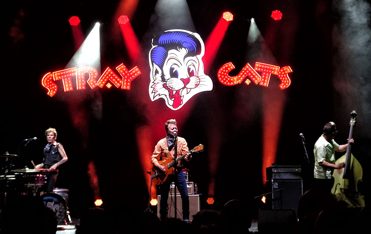 Stray Cats 3 by Ian Corbridge