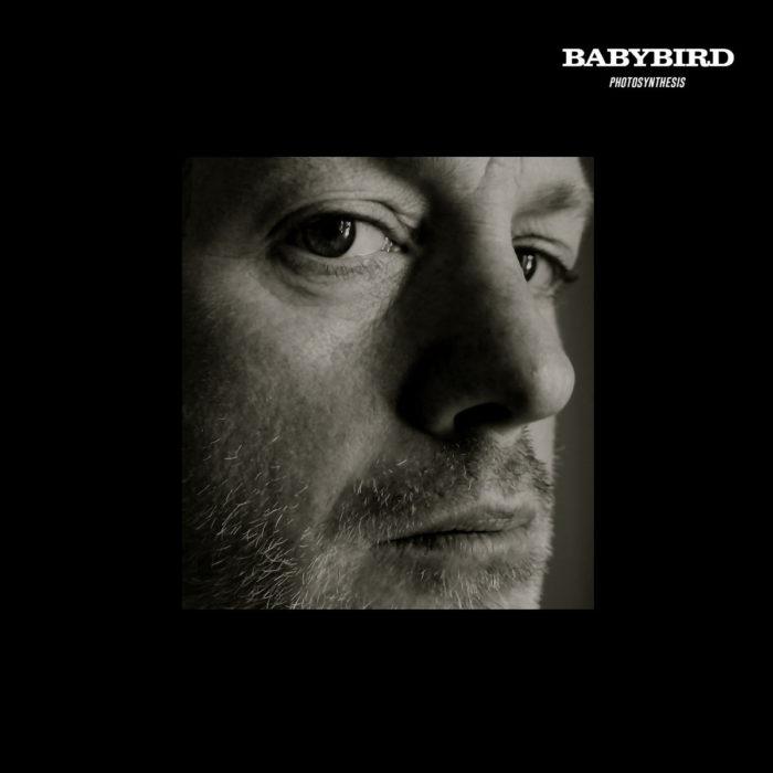 Babybird - Photosynthesis