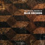 blue orchids magic