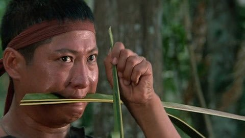 Three Films with Sammo Hung – film review