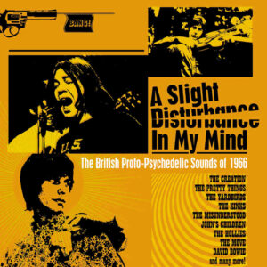 Various – A Slight Disturbance In My Mind – album review