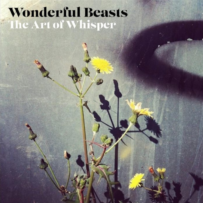 Wonderful Beasts - The Art Of Whisper