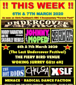 Undercover punk festival puts on final event next week – last chance to celebrate Chris Packham's favourite punk festival