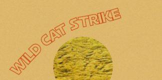 WILD CAT STRIKE Mustard