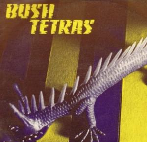 Bush Tetras Too Many Creeps
