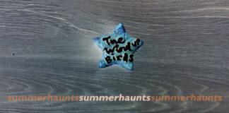 The Wind-Up Birds Summer Haunts COVER