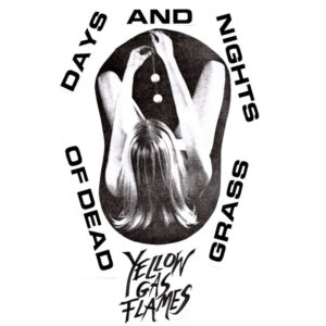 Yellow Gas Flames: Days And Nights Of Dead Grass – album review
