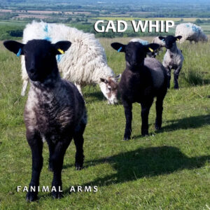 Gad Whip: Fanimal Arms – album review