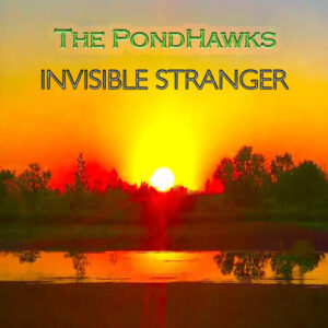 The PondHawks – interview and new single