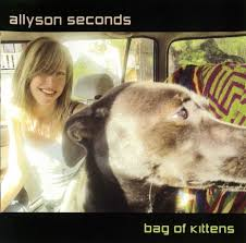 Allyson Seconds – Bag Of Kittens – album review
