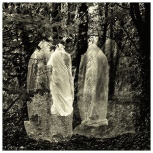 Branch To Root: Jamais Vu – EP review and video premiere.