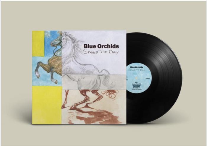 Blue Orchids announce new album : Manchester legends latest missive announced