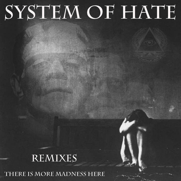 System Of Hate 'There Is More Madness Here' : album review