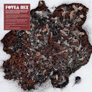 Fovea Hex – The Salt Garden (Landscaped) – album review